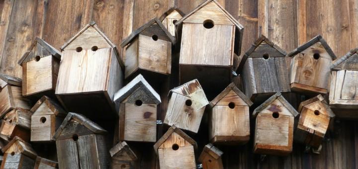 Opruimen en organizen. Een stapel vogelhuisjes om orde en chaos te laten zien